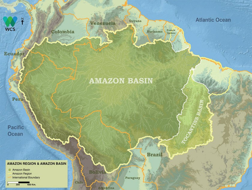 The Pan-Amazon reagion is made up of nine countries on amazon forest colombia, amazon forest ecuador map, amazon forest peru, amazon forest brazil map, amazon forest in south america, amazon forest on map, amazon forest world map,