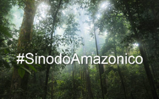 Video: Voices about the Amazon